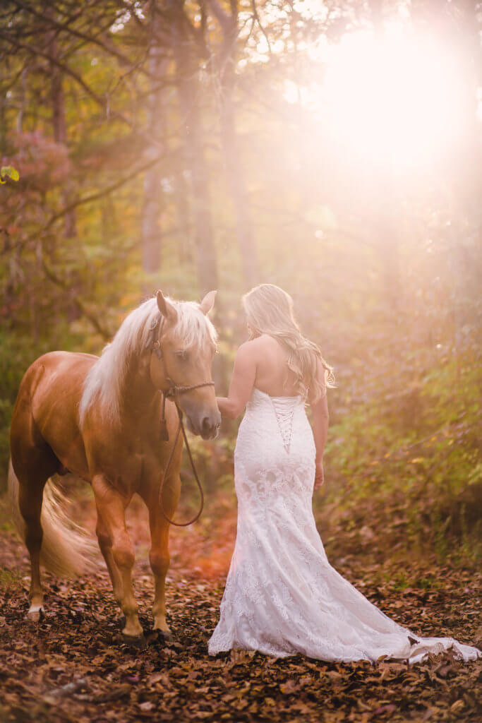 Bride and Horse on a Farm in Knoxville Tennessee